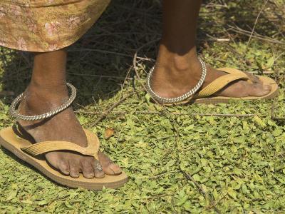 Female Farmer's Feet Standing on Henna Leaves, Village of Borunda, India-Eitan Simanor-Photographic Print
