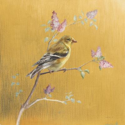 Female Goldfinch on Gold-Danhui Nai-Art Print