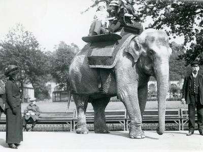 Female Indian Elephant 'Lukhi' Giving Children a Ride with Keeper Charles Eyles-Frederick William Bond-Photographic Print
