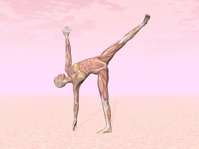 Female Musculature Performing Half Moon Yoga Pose--Art Print