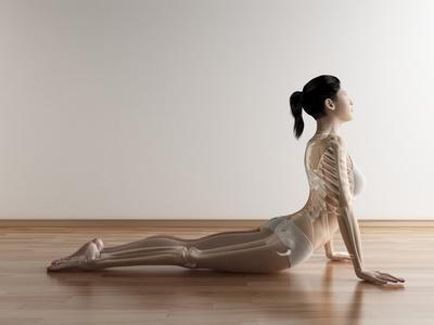 https://imgc.artprintimages.com/img/print/female-stretching-artwork_u-l-pzklys0.jpg?p=0