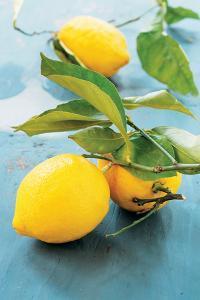 Femminello Lemon of Gargano Igp