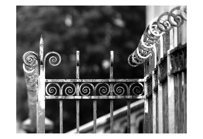 Fence 3-Tracey Telik-Art Print