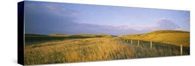 Fence in a Field, Standing Rock Indian Reservation, North Dakota, USA