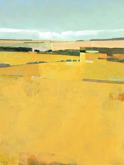 Fence Lines and Fields-Greg Hargreaves-Art Print