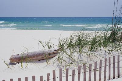 Fence on the beach, Alabama, Gulf of Mexico, USA--Photographic Print