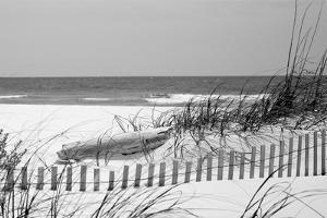 Fence on the beach, Bon Secour National Wildlife Refuge, Gulf of Mexico, Bon Secour, Baldwin Cou...