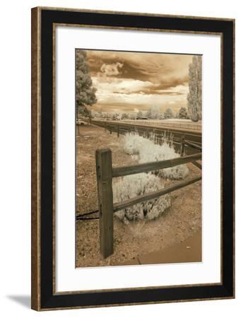 Fence & Road, Albuquerque, New Mexico 06-Monte Nagler-Framed Photographic Print