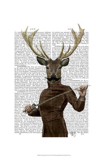 Fencing Deer Portrait-Fab Funky-Art Print