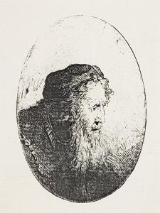 Bearded Old Man, C.1644-46 by Ferdinand Bol