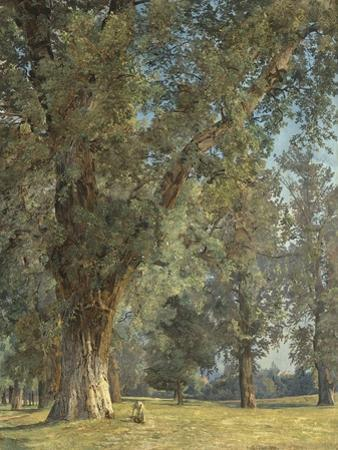 View from the Prater in Vienna (With Tree at Left) by Ferdinand Georg Waldmüller