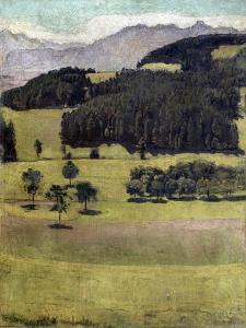 Landscape, Oaks at Stockhorn, 1898 by Ferdinand Hodler