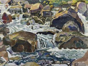 Mountain Stream Near Champéry, 1916 by Ferdinand Hodler