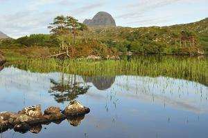 Suilven over a Highland Loch with Islands of Scots Pine and Birch. Sutherland, Scotland by Fergus Gill