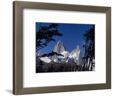 Santa Cruz Province, Cerro Fitzroy, in the Los Glaciares National Park, Framed by Trees, Argentina
