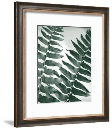 Fern Detail II-Boyce Watt-Framed Giclee Print