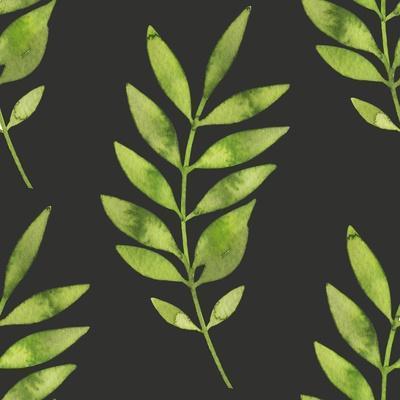 https://imgc.artprintimages.com/img/print/fern-leaf-on-dark-background_u-l-q1bzd6w0.jpg?p=0