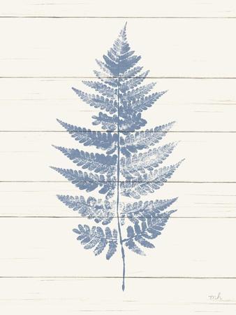 https://imgc.artprintimages.com/img/print/fern-print-i-blue-crop_u-l-q1ddwmw0.jpg?p=0