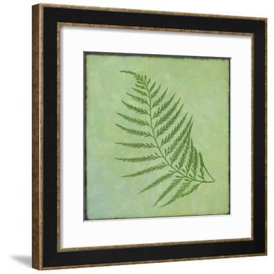 Fern Series Vintage I-Cora Niele-Framed Giclee Print