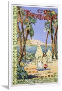 Transatlantique P.L.M. Poster by Fernand Le Quesne