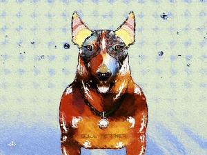 Bull Terrier Brown Oxide LX by Fernando Palma