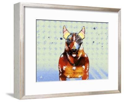 Bull Terrier Brown Oxide LX