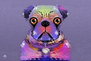 PUG Purple XXXIII by Fernando Palma