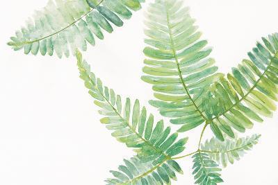 Ferns I Square-Chris Paschke-Art Print