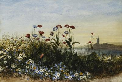 Ferry Carrig Castle, Co. Wexford, Seen Through a Bank of Wild Flowers-Andrew Nicholl-Giclee Print