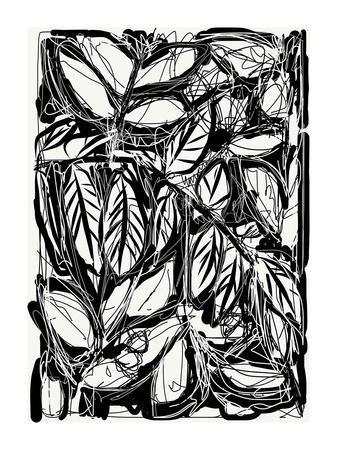 https://imgc.artprintimages.com/img/print/feuilles-2015_u-l-f97qhd0.jpg?p=0