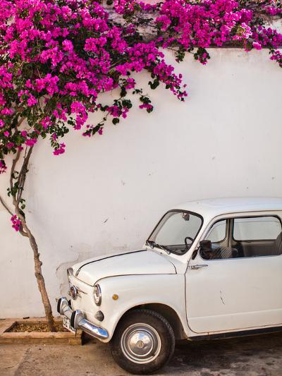 Fiat under Tree in Mojacar, Andalucia, Spain, Europe-John Alexander-Photographic Print