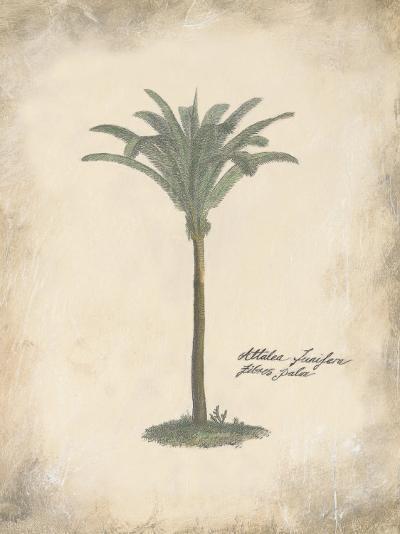 Fibres Palm-Hewitt-Art Print