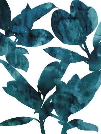 Ficus Elastica-Tania Bello-Giclee Print