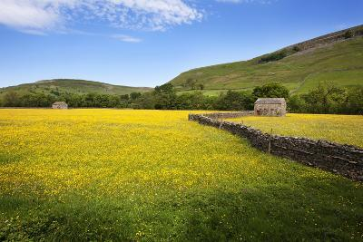 Field Barns and Buttercup Meadows at Muker-Mark Sunderland-Photographic Print