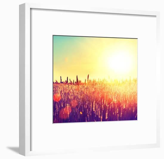 Field, Beautiful Nature Sunset Landscape-Subbotina Anna-Framed Art Print