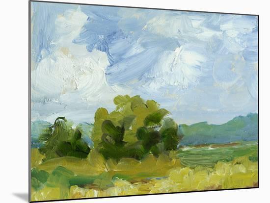 Field Color Study I-Ethan Harper-Mounted Art Print