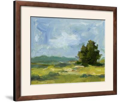 Field Color Study II-Ethan Harper-Framed Photographic Print