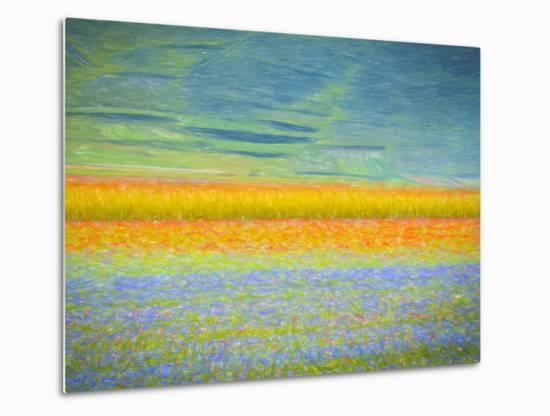 Field Colors-Marco Carmassi-Metal Print