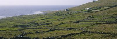 Field, Donegal, Republic of Ireland--Photographic Print