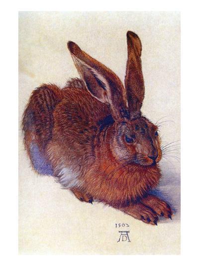 Field Hare-Albrecht D?rer-Art Print