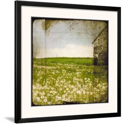 Field II-Ingrid Blixt-Framed Art Print