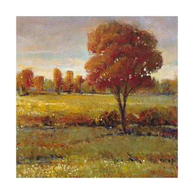 Field in Fall-Tim O'toole-Art Print
