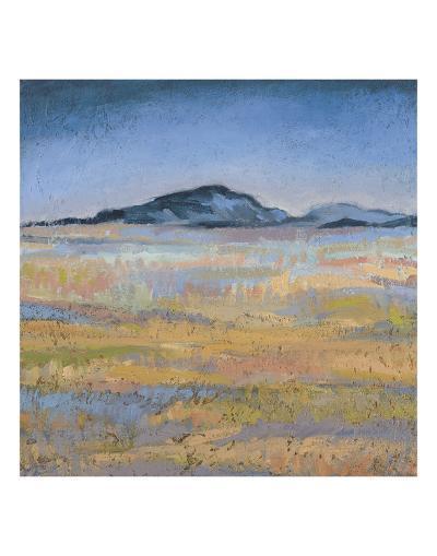 Field in Magical Light-Jeannie Sellmer-Art Print