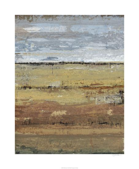 Field Layers I-Tim OToole-Limited Edition