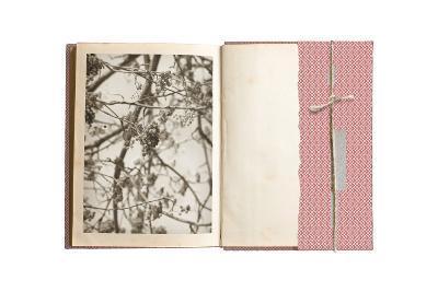 Field Notes 7-Art Kitchen-Premium Giclee Print
