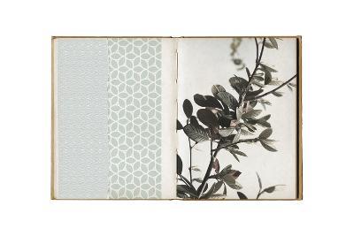 Field Notes 8-Art Kitchen-Premium Giclee Print