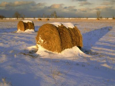 Field of Hay Rolls in Winter, Michigan, USA-Willard Clay-Photographic Print