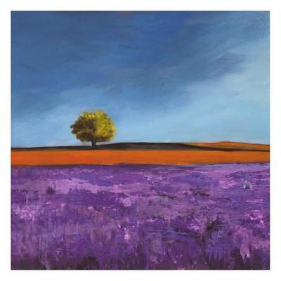 https://imgc.artprintimages.com/img/print/field-of-lavender_u-l-f5f9i20.jpg?p=0