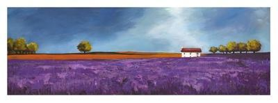 https://imgc.artprintimages.com/img/print/field-of-lavender_u-l-f5f9ij0.jpg?p=0