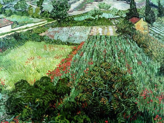 Field of Poppies, Saint-Remy, c.1889-Vincent van Gogh-Giclee Print